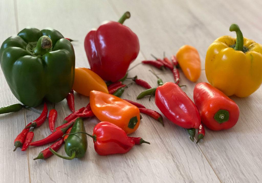Chili scharf für feurige Rezepte