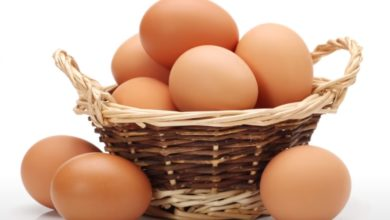 Eier Diät Rezepte zum Abnehmen