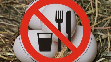 Lebensmittelwarnung Eier