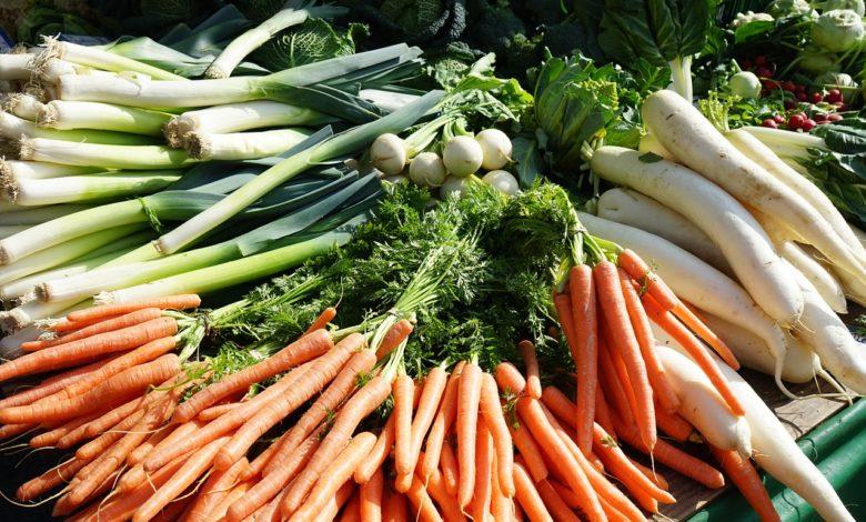 Mairübe Salat mit Gurken, Radieschen und Joghurtdressing