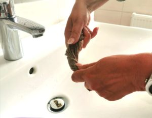 Mundschutz auswringen