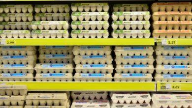 Was bedeuten Verfallsdaten auf Lebensmitteln wirklich?