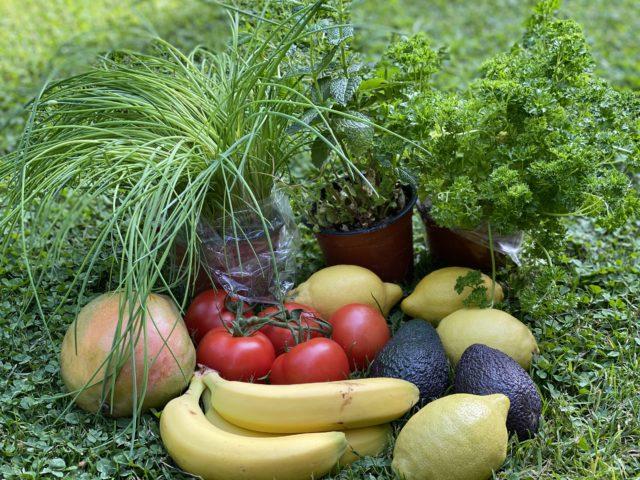 Welche Formen des Vegetarismus gibt es
