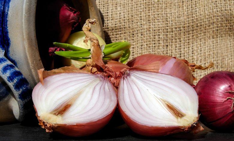 Zwiebeln in der Küche - Sorten und Verwendung